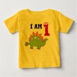 1st birthday party gift, dinosaur stegosaurus t-shirts