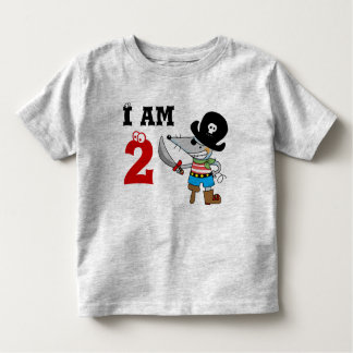 2 year old pirate birthday boy shirt
