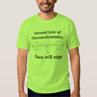 2nd Law of Thermodynamics T Shirts