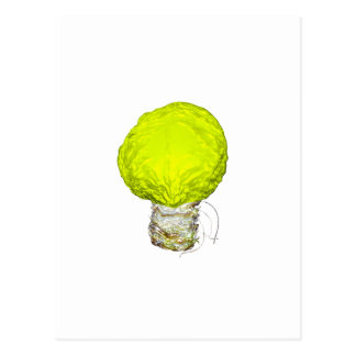 A Bright Idea About Cabbage Postcard
