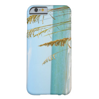 A Day at Barefoot Beach phone case