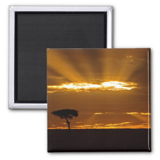 A mouth openning sunrise in the Maasai Mara Square Magnet