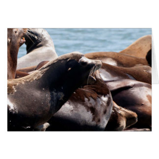 A Sea Lions Bellows Greeting Card