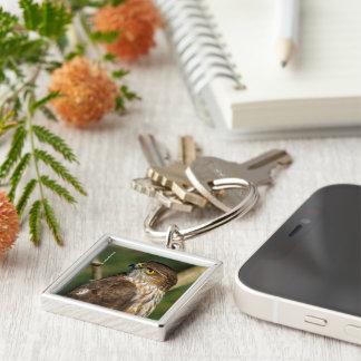 A Sharp-Shinned Hawk Comes A-Callin' Silver-Colored Square Key Ring