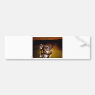 A small dog named Bosse Bumper Sticker