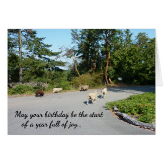 A Year Full of Joy...Religious birthday Greeting Card
