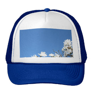 Add your text to this Hat