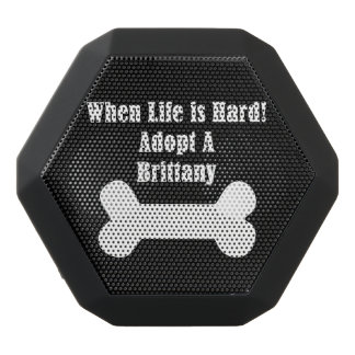 Adopt A Brittany