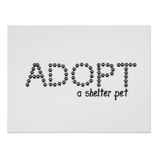 Adopt a Shelter Pet Paws Poster