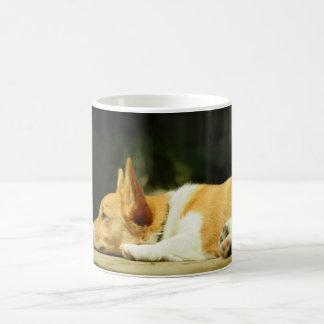 Adorable Pembroke Welsh Corgi Puppy Mug