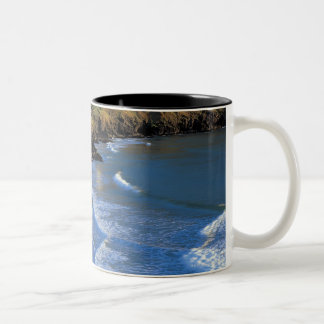 aerial view of waves washing up against a Two-Tone mug