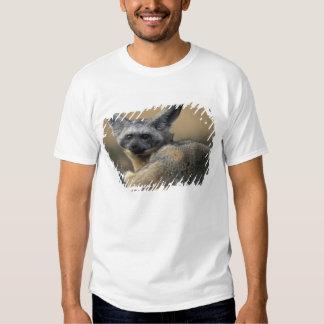 Africa, Kenya, Masai Mara Game Reserve, Bat Tshirt