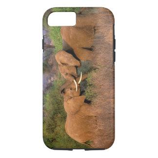 Africa, Kenya, Samburu. Elephant challenge iPhone 7 Case
