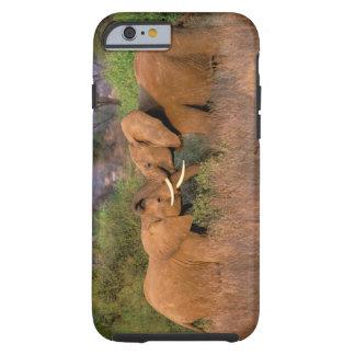 Africa, Kenya, Samburu. Elephant challenge Tough iPhone 6 Case