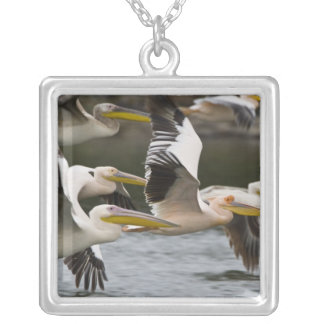 Africa. Kenya. White Pelicans in flight at Lake Square Pendant Necklace