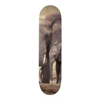 Africa, Tanzania, Tarangire National Park. 2 Custom Skate Board