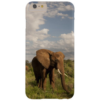 African Elephant, Loxodonta africana, out in a Barely There iPhone 6 Plus Case