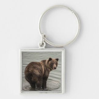 Alaska Brown Bear (Grizzly) Silver-Colored Square Key Ring