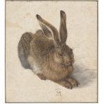 Albrecht Dürer - Hare Standing Photo Sculpture