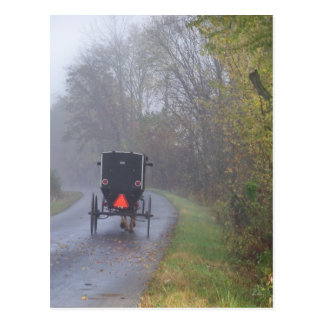 amish in a foggy forest postcard