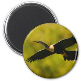 anhinga 6 cm round magnet