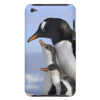 Antarctic Peninsula, Neko Harbour, Gentoo iPod Case-Mate Case