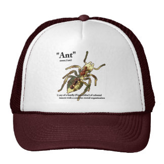 Ants & Attitude - Hat #3