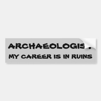 Archaeologist Pun. Career In Ruins Bumper Sticker