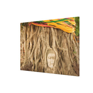 Asia, Thailand, Siam, Buddha in tree ruts at Gallery Wrap Canvas