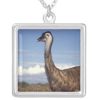 Australia, Western Australia. Emu (Dromaius Square Pendant Necklace