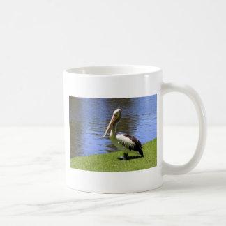 Australian Pelican along the River Torrens. Basic White Mug