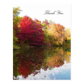 Autumn Beauty Sympathy Thank You Postcard