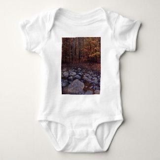 Autumn Brook Tee Shirt
