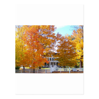 Autumn in the Suburbs Postcard