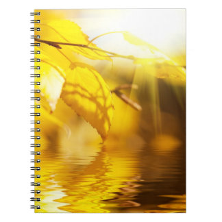 Autumn leaves on a sunny day note book