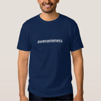 Awesomeness teen shirt awesome!
