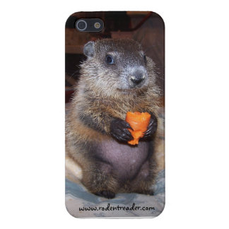 Baby Groundhog Maude iPhone Case iPhone 5/5S Cover