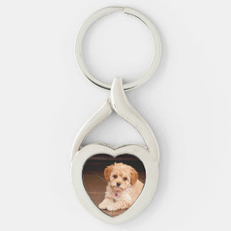 Baby Maltese poodle mix or maltipoo puppy dog Silver-Colored Twisted Heart Key Ring