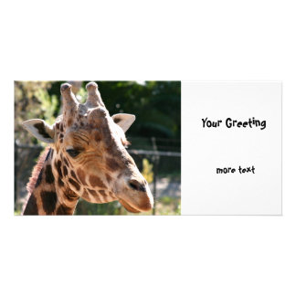 Baringo Giraffe Custom Photo Card