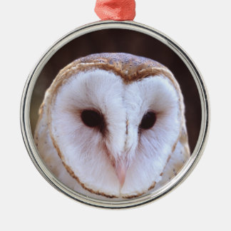 barn owl face Silver-Colored round decoration