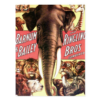 Barnum & Bailey and Ringling Bros Combined - Eleph Postcard