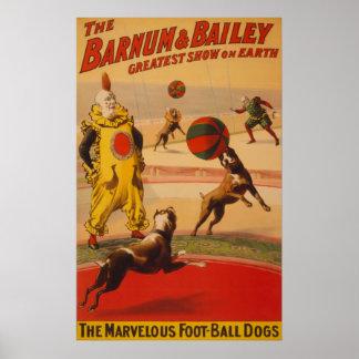 Barnum & Bailey - Marvelous Football Dogs Poster