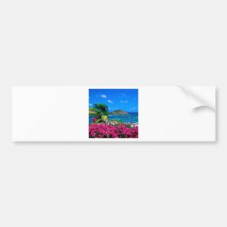 Beach French Cul De Sac Saint Martin Bumper Sticker