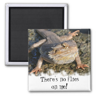 Bearded Dragon Series Square Magnet
