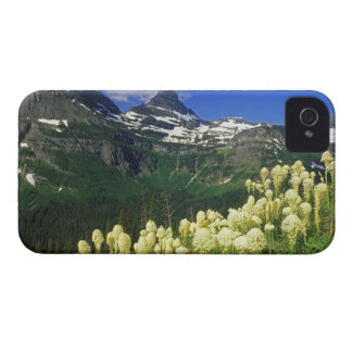 Beargrass at Logan Pass in Glacier National Park Case-Mate iPhone 4 Case