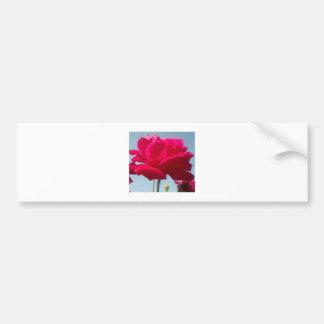 Beautiful Amazing Hakuna Matata Rose For the Bride Bumper Sticker