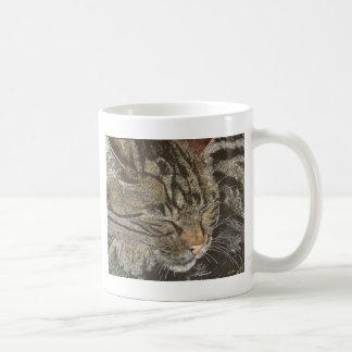 Beautiful Dreamer (sleeping tabby) Basic White Mug