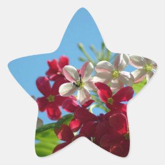 Beautiful flower in the world 02 star sticker