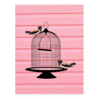 beautiful vintage pink birds cage cute polka dot postcard