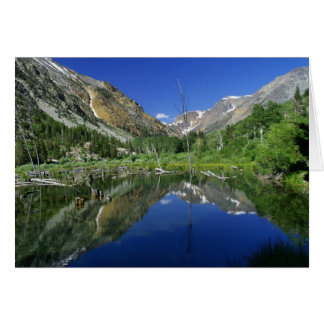 Beaver Pond, Lundy canyon Note Card
